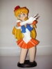 photo of Sailor Venus