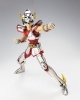 photo of Saint Cloth Myth: Pegasus Seiya 1st Cloth Ver.