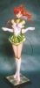 photo of Eternal Sailor Jupiter