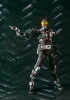 photo of S.I.C. Kiwami Tamashii Kamen Rider Faiz