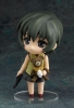 photo of Nendoroid Ein