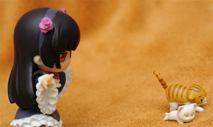 Kuroneko trying to catch two pusses