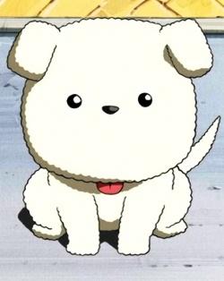 Japanese Name For Black And White Dog
