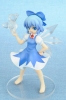 photo of Cirno