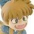 Rumiko Takahashi Figure Collection: Shippo