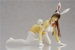 photo of Shihoudou Yuki Collection: Bunny Suit Ver.