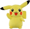 photo of Best Wishes Pikachu