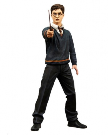 main photo of Harry Potter