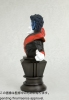 photo of Fine Art Bust Nightcrawler