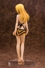 photo of Charlotte Dunois Swimsuit Ver.