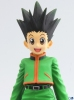 photo of DX Figure: Gon Freecss