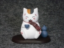 photo of Madara (Nyanko-sensei)