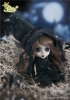 photo of Little Pullip+ Noir