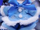 photo of Plush Strap Series: Snow Miku FuwaFuwa Coat Ver.