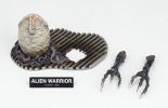 photo of SCI-FI Revoltech No.016 Alien Warrior