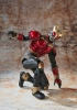 photo of S.I.C. Kiwami Tamashii Kamen Rider Kuuga Mighty Form