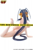 photo of Himejima Akeno Swimsuit Ver.
