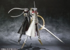 photo of D-ARTS: Izanagi no Okami