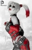 photo of Harley Quinn