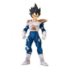photo of Dragon Ball Kai DX Wild Style: Vegeta