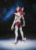 photo of S.H.Figuarts Pegasus Kouga