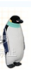 main photo of Penguin