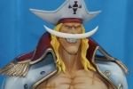 photo of Portrait of Pirates EX Edward Newgate Ver. 0