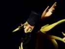 photo of Super Figure Legend - Adieu Galaxy Express 999: Maetel (A)