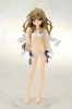 photo of Aisaka Taiga Swimsuit Ver.