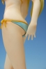 photo of Kashiwazaki Sena Swimsuit ver.