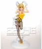 photo of Gathering Charlotte Dunois Bunny Style Special Version