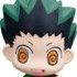Chara Fortune Plus Series: Hunter x Hunter - Can You Become a Hunter? Fortune★: Gon Freecss