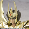 photo of Saint Cloth Myth Phoenix Ikki God Cloth ~Original Color Edition~