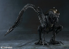 photo of S.H.MonsterArts Warrior Alien