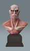 photo of PM Figure Colossal Titan Bust