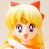 S.H.Figuarts Sailor Venus with Artemis