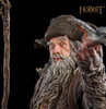 photo of Radagast the Brown