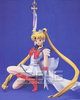 photo of Gathering Super Sailor Moon