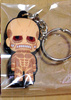 photo of D4 Attack on Titan Rubber Keychain Collection Vol.2: Colossal Titan Secret 2