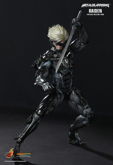 main photo of Video Game Masterpiece Raiden