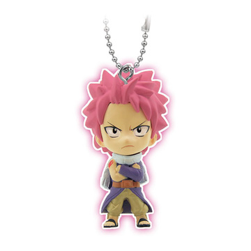 main photo of Fairy Tail Swing: Natsu Dragneel