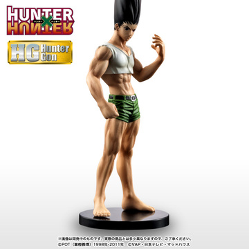main photo of HG Gon Freecss