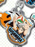 main photo of Haikyuu!! Metal Charm Collection: Koushi Sugawara