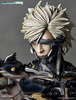photo of Raiden