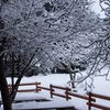 bill_kostakos_9