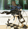 photo of Black ★ Rock Shooter Animation Ver.