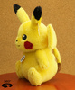 photo of Pikachu