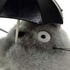 photo of  Big Totoro Holding Umbrella