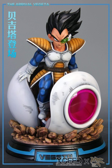 main photo of Arrival Vegeta