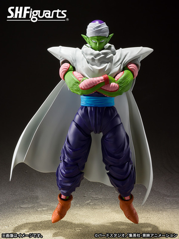 main photo of S.H.Figuarts Piccolo The Proud Namekian ver.
